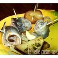 Tapas aux sardines