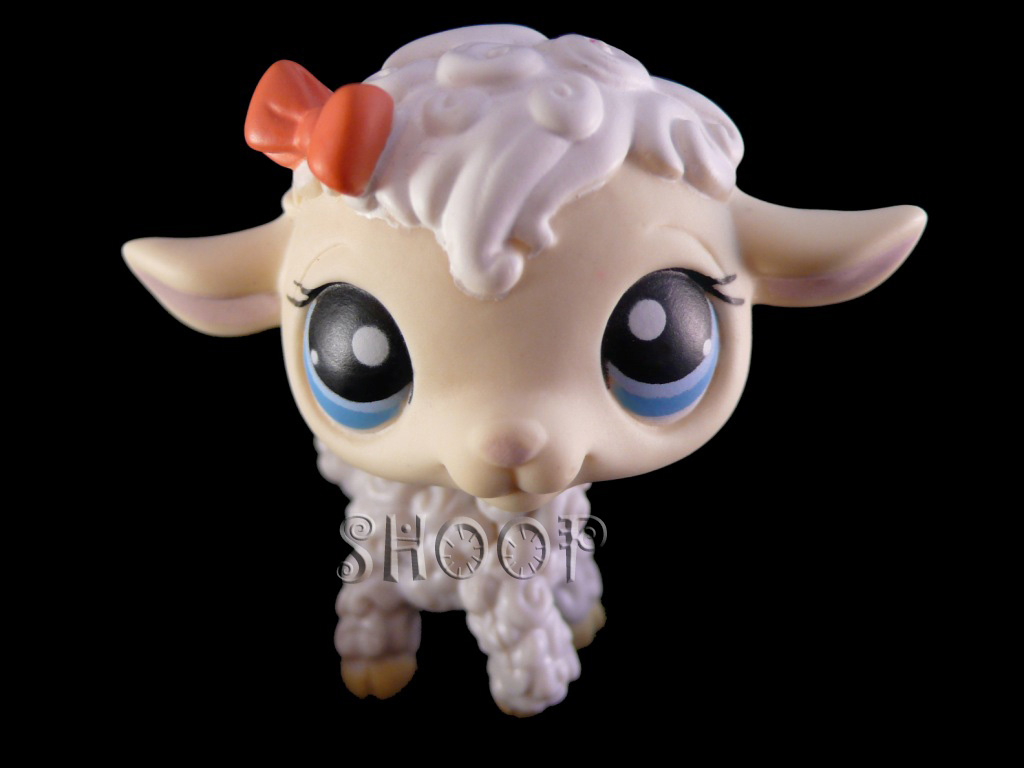Mouton sans #