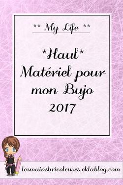 *Haul* Matériel pour mon Bujo 2017