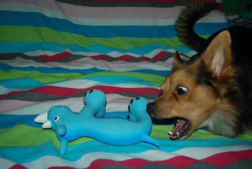 "jouet latex ""slim"" bleu"