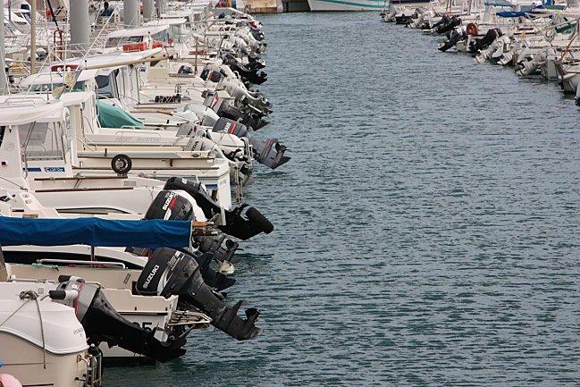 St-quay-Portrieux--111--alignement-de-chevaux.jpg