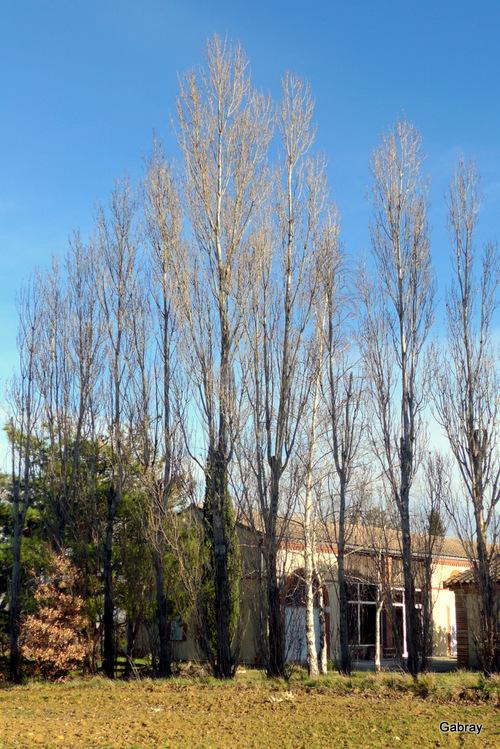 Toulouse vue des hauteurs des coteaux ...