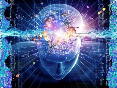 Le cerveau holographique