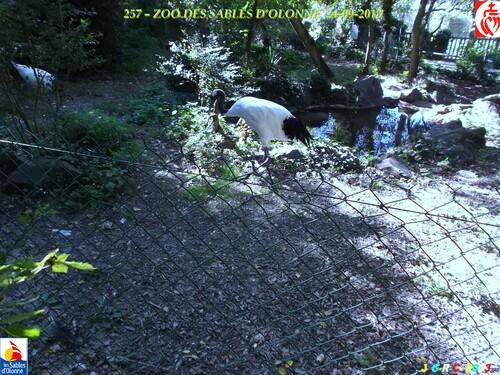 ZOO DES SABLES  D'OLONNE  6/9     30/03/2014