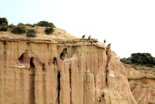 Les Bardénas Réales un désert en Espagne