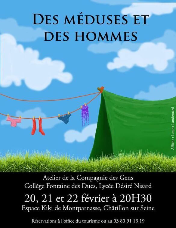 """""""Des méduses et des hommes"""", un désopilant spectacle présenté par l'atelier-théâtre du Collège Fontaine des Ducs et du Lycée Désiré Nisard de Châtillon sur Seine..."""