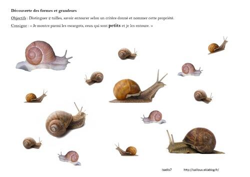 J'entoure les petits escargots