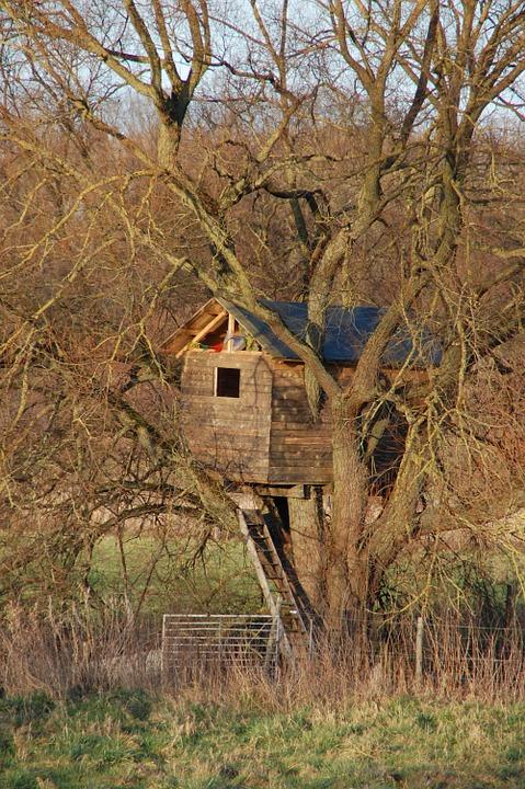Ma cabane dans l'arbre...
