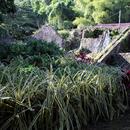 Anciens bâtiments et système d'irrigation - Photo : Yvon (Février 2015)