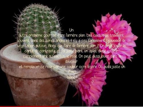 Dessin et peinture - vidéo 3252 : Comment peindre cactus et fleurs de cactus ? - aquarelle.