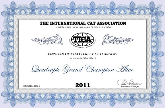 Expo : Chateaugiron 2011