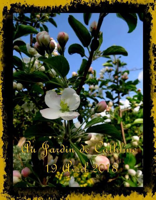 Au Jardin et avec la lune du 21 au 30 Avril