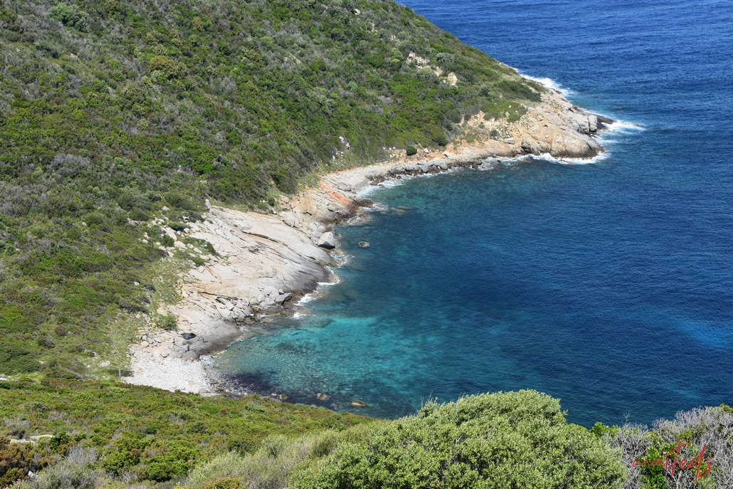 Galéria-Calvi par la côte