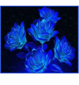 Echange blanc bleu chez Manou