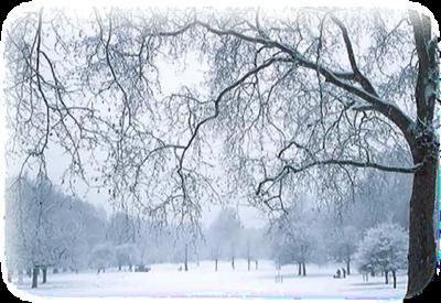 Téli tájon..