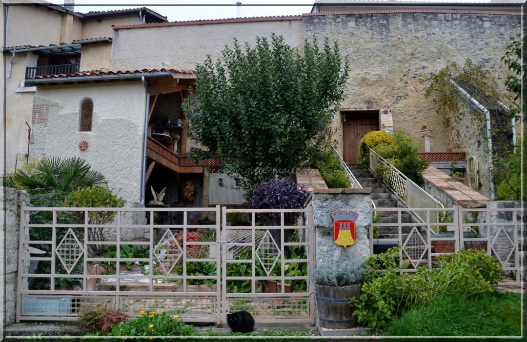 Dans les rues de Castelnau Barbarens - Gers 8-11-2013