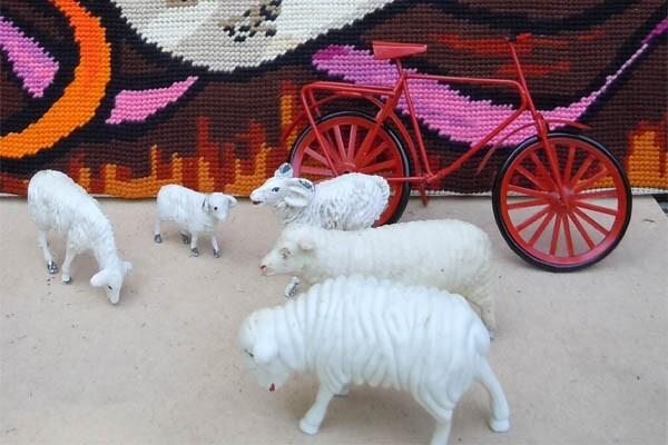 Un vélo, des moutons