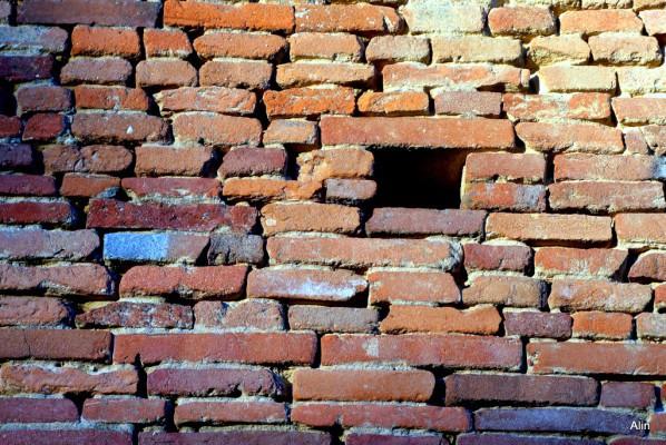 dq01---mur-toulousain.JPG