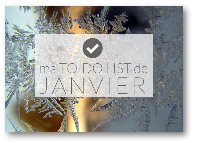 "✿ Ma ""to-do list"" de janvier."