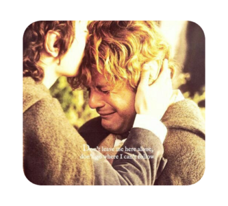 Harry et Frodo, ces protagonistes mal-aimés