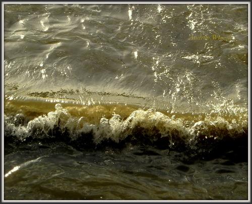 La marée 12...2015...
