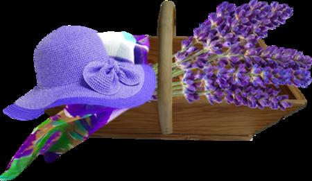 Tubes Provence