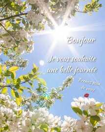 Peut être une image de fleur, arbre, ciel et texte qui dit 'Bonjour Je vous vous souhaite une belle journée Prenez soin de vous'