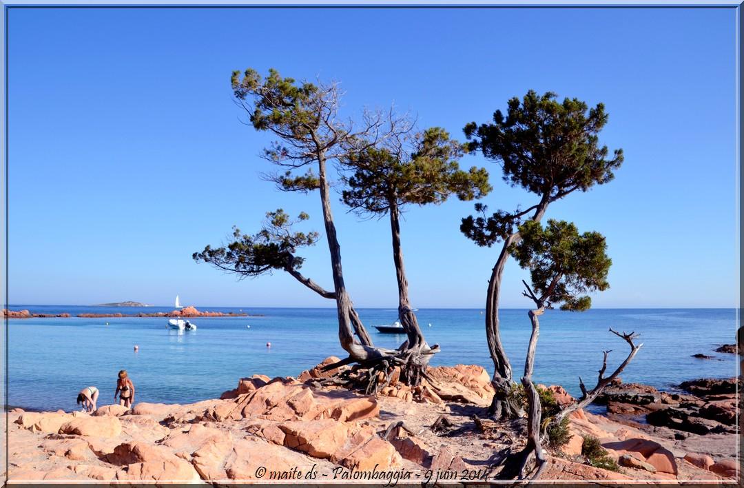 Un petit air de vacances - Palombaggia - Corse