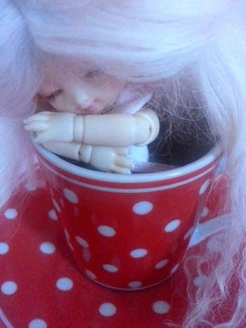 Ichigo cup 8