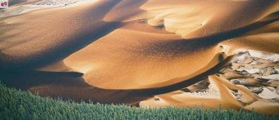 Dunes de sable d'Athabasca