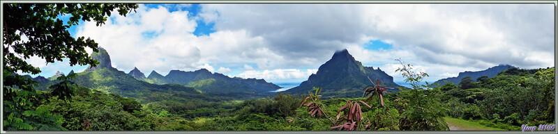 Panorama sur les deux baies de Moorea et le Mont Rotui vu à partir du Belvédère - Polynésie française