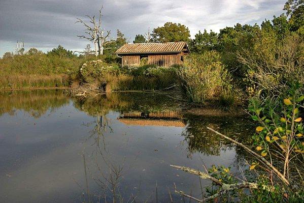 Bassin-d-Arcachon 0317 8 9