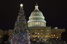 La réforme fiscale sous le sapin de Noel