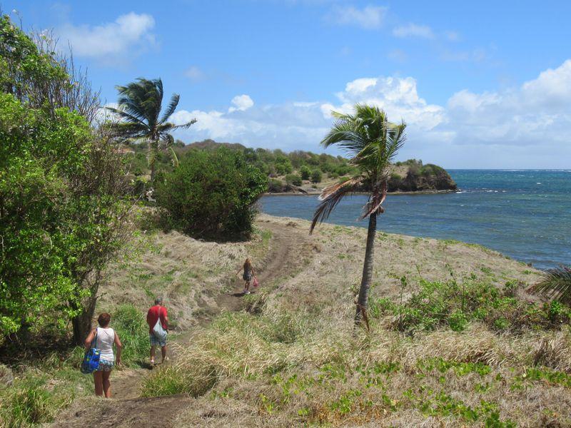 La Boucle du Vauclin et Trou Cochon : de beaux points de vue sur l'Atlantique