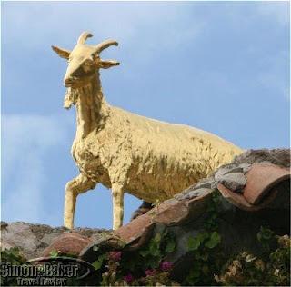 Chèvre d'or
