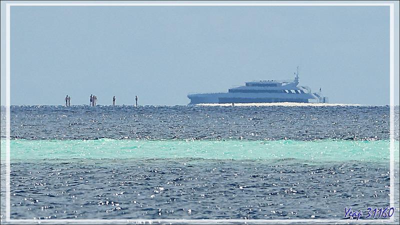 Aux Maldives, certains marchent sur l'eau ! (Banc de sable en plein milieu de l'atoll, zoom 1200 mm))