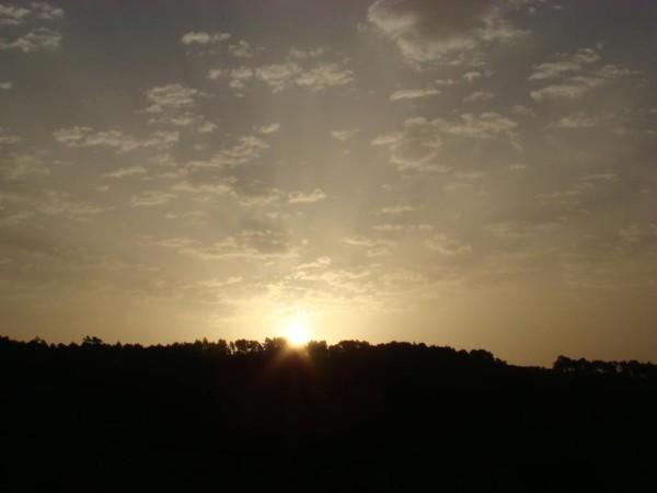 soleill-02-05-2013--26-.JPG