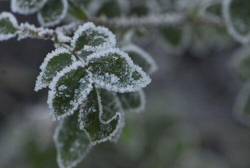 Effets d' hiver.