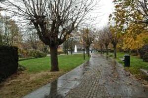 Bientôt le jugement des meurtriers  de Kevin Marichal au parc George Henri le 14 janvier 2011