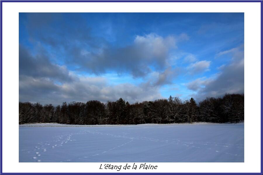 Saint-Nabord, un patrimoine naturel