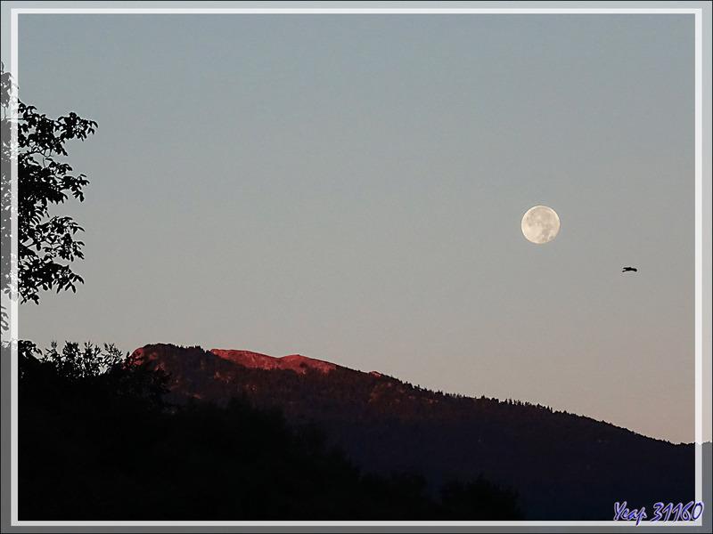 Coucher de la pleine Lune au lever du Soleil, au-dessus du Pic du Gar (1785 m), vu de Lartigau - Milhas - 31