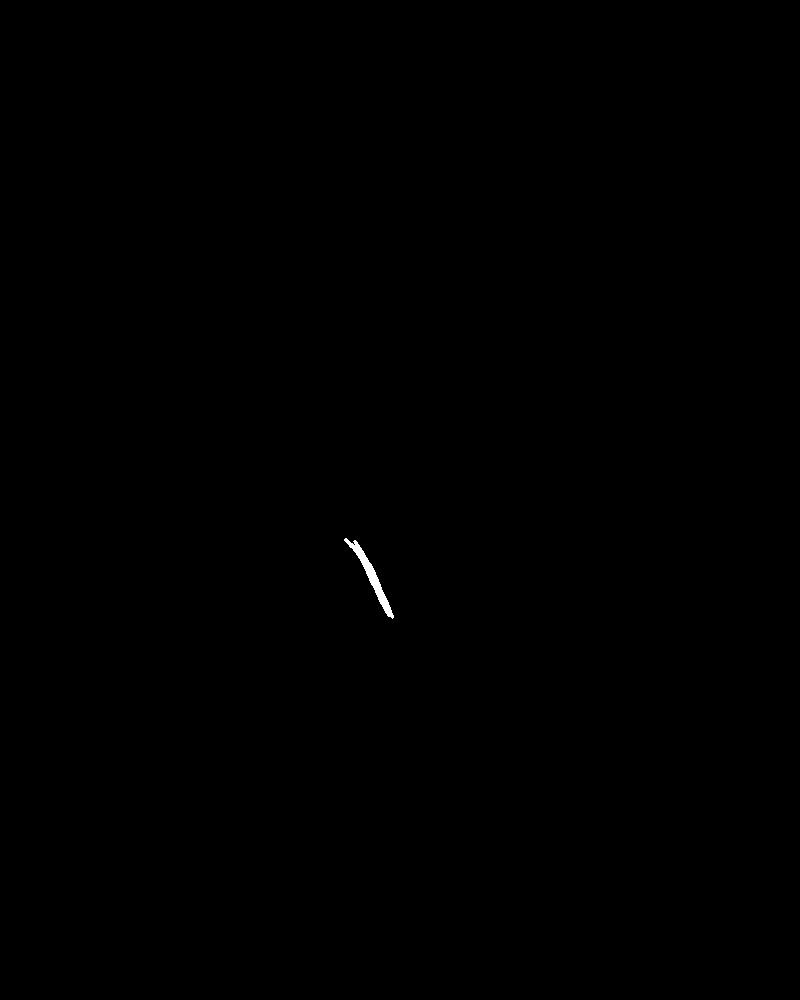 Astronaute en noir et blanc