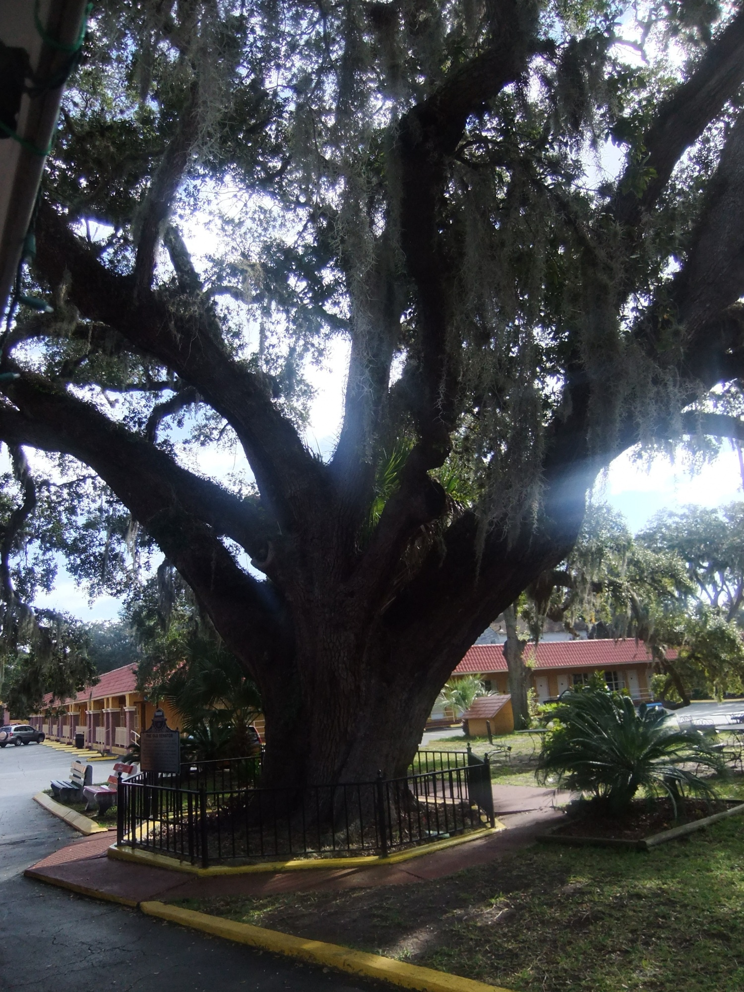 SAN AUGUSTINE FLORIDE 2011