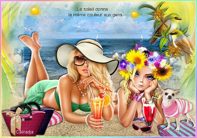 """""""Le soleil donne"""" de Laurent Voulzy !"""