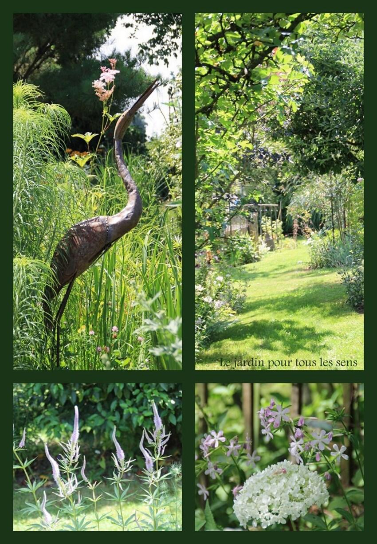 Le jardin pour tous les sens