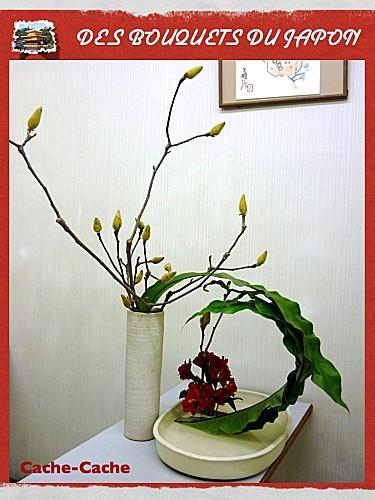 beauté mystérieuse fevrier (4)