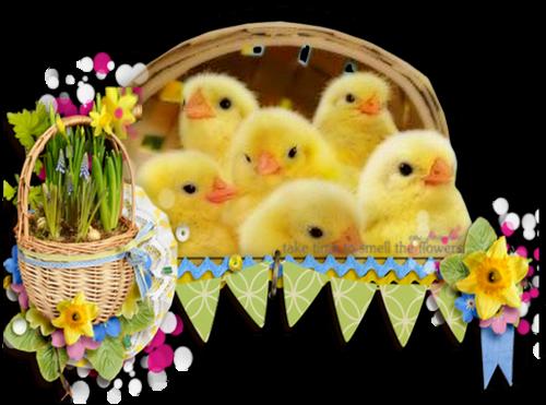 Petits Animaux De Pâques