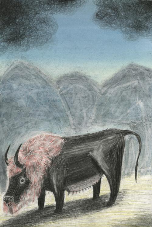 animal mythologique des pyrénées orientales Matthieu Chiara