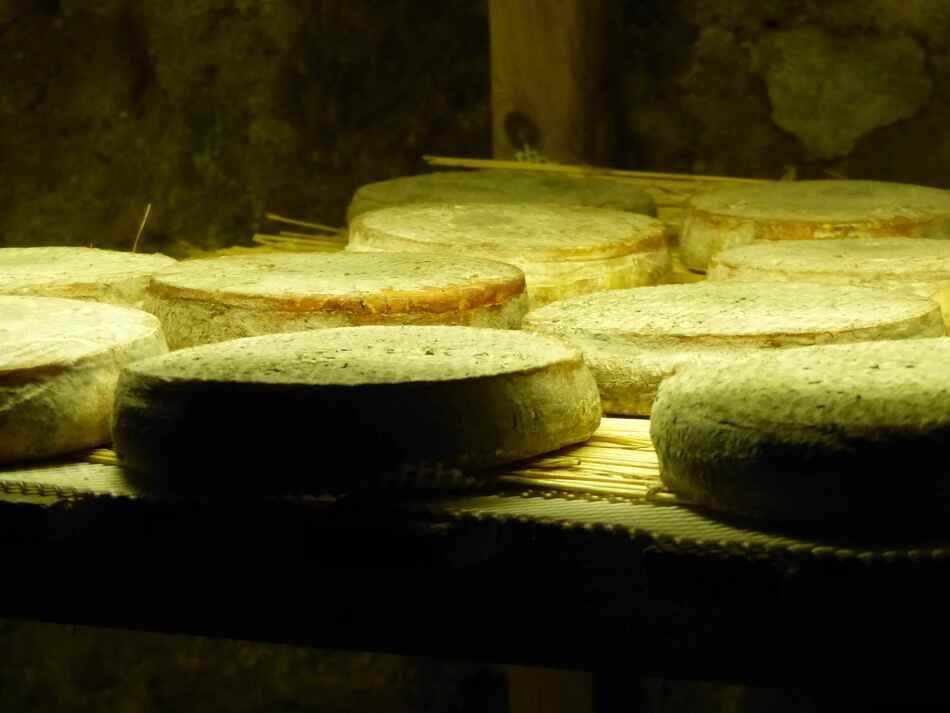 Le fromage St Nectaire.