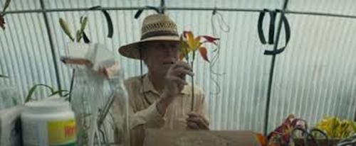 The mule, Clint Eastwood, 2018